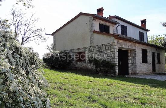 Stone house with building land 13674m2, Svetvincenat