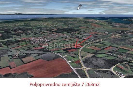Kmetijsko zemljišče 7 263m2, Pula