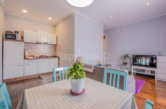Wohnung, ein Schlafzimmer, neu renoviert, Pula, Stoja
