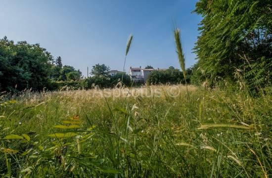 Gradbeno zemljišče 3004 m2, Vodnjan