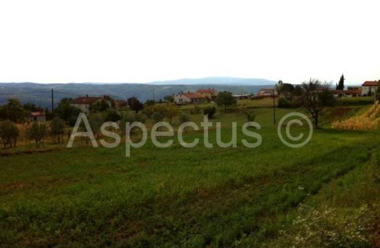 Građevinsko zemljište sa plaćenim komunalijama za izgradnju kuće, Barban, Cvitići