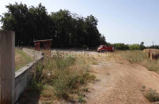 Istra-Barban zazidljiva parcela 5990 m2