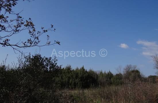 Rovinj, Kukuletovica poljoprivredno zemljište 8.672 m2