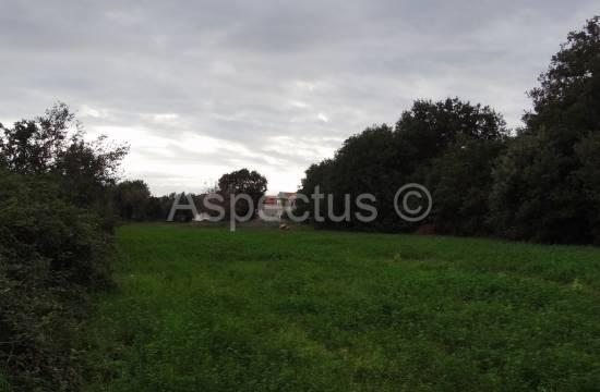 Ližnjan, Grundstück 1 700 + klein 1 141m2