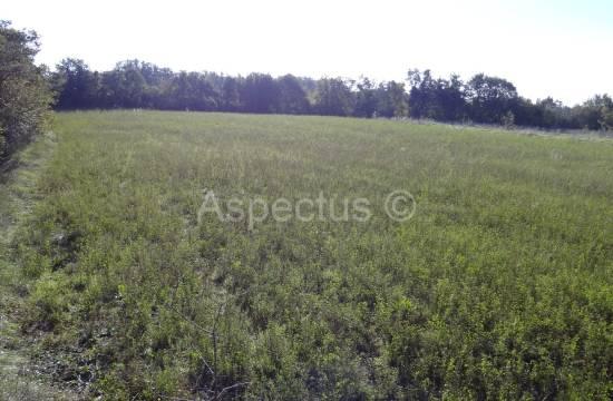 Juršići, landwirtschaftliche Flächen 4053m2