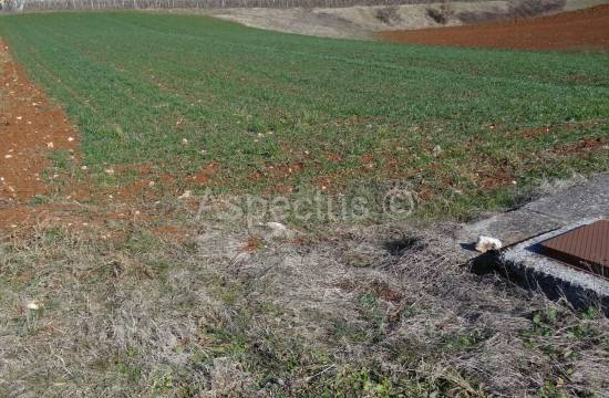 Pazin, building plot 10765m2 business uses