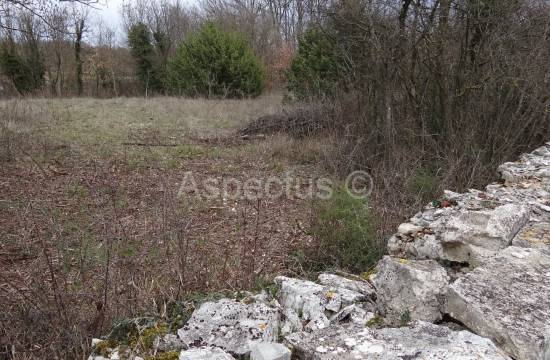 Kanfanar, building and agricultural land 2020 m2