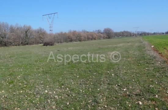 Landwirtschaftliche Flächen 12190m2, Pula, Loborika