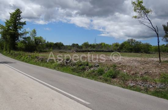For sale, agricultural and building land 20078m2, Marčana, Divšići